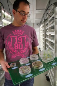 Monsanto research associate Ben Schaefer, standing in a growth chamber at the company's Chesterfield Village Research Facility, holds a display with samples from the initial 10 weeks of life for corn plants. (Photo by Amy Mayer, Harvest Public Media)
