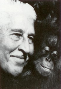"""Marlin Perkins was host of """"Mutual of Omaha's Wild Kingdom"""" from 1963-1985. He also served as director of the Saint Louis Zoo. Through """"Wild Kingdom,"""" Perkins helped millions of the television viewers foster a greater appreciation for wildlife and habitat preservation. (Photo Courtesy Mutual of Omaha)"""