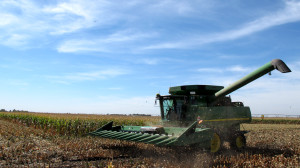 After the drought crippled corn yields in 2012, farmers across the Midwest are harvesting what could be the largest crop ever in 2013. (Photo by Grant Gerlock, NET News/Harvest Public Media)