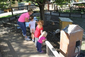 "Feeding the rabbits at Vala's ""Bunnyland"" (Mike Tobias/NET News photo)"
