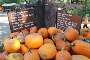 Pumpkins are just a small part of the Vala's Pumpkin Patch attraction (Mike Tobias/NET News photo)