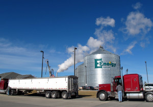 E Energy in Adams, Neb. takes in corn from local farms to make 65 million gallons of ethanol each year. They also make distillers grains from the corn which is used to feed livestock, corn oil which can be made into biodiesel, and CO2 which is used in soft drinks. (Photo Grant Gerlock)