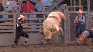"As a bullfighter you have to be ready to take a hit. ""If I have to take a hookin', I have to take a hookin'. That's what the job is,"" said rodeo bullfighter Rowdy Moon. (Photo by Brian Seifferlein, Harvest Public Media)"