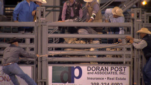 Bull riders face the daunting task of riding a raging, 2,000 lb. animal for eight seconds with only one hand on the rope. (Photo by Brian Seifferlein, Harvest Public Media)