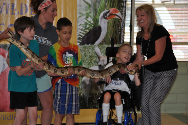 Kids at camp Munroe are introduced to a nine foot long boa constrictor,. Research shows encounters like this have a positive impact on children with disabilities.